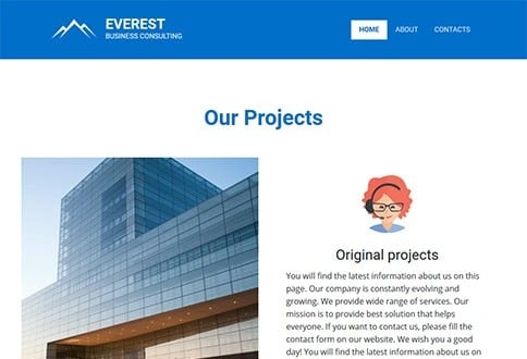 Everest business consulting